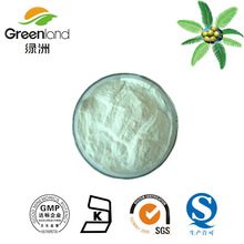 High Quality Saw Palmetto Fruit Extract,Saw palmetto extract,Saw Palmetto P.E
