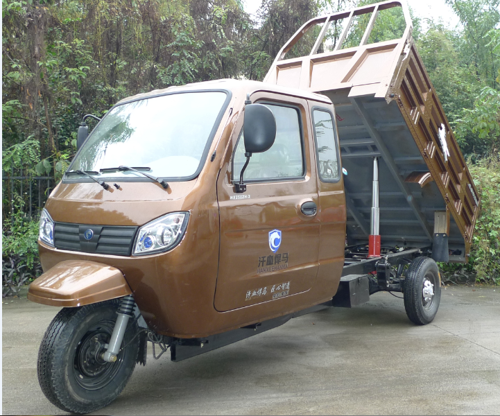 trade assurance hot sale 250cc motorized fat tire tricycle for cargo delivery with closed cabin