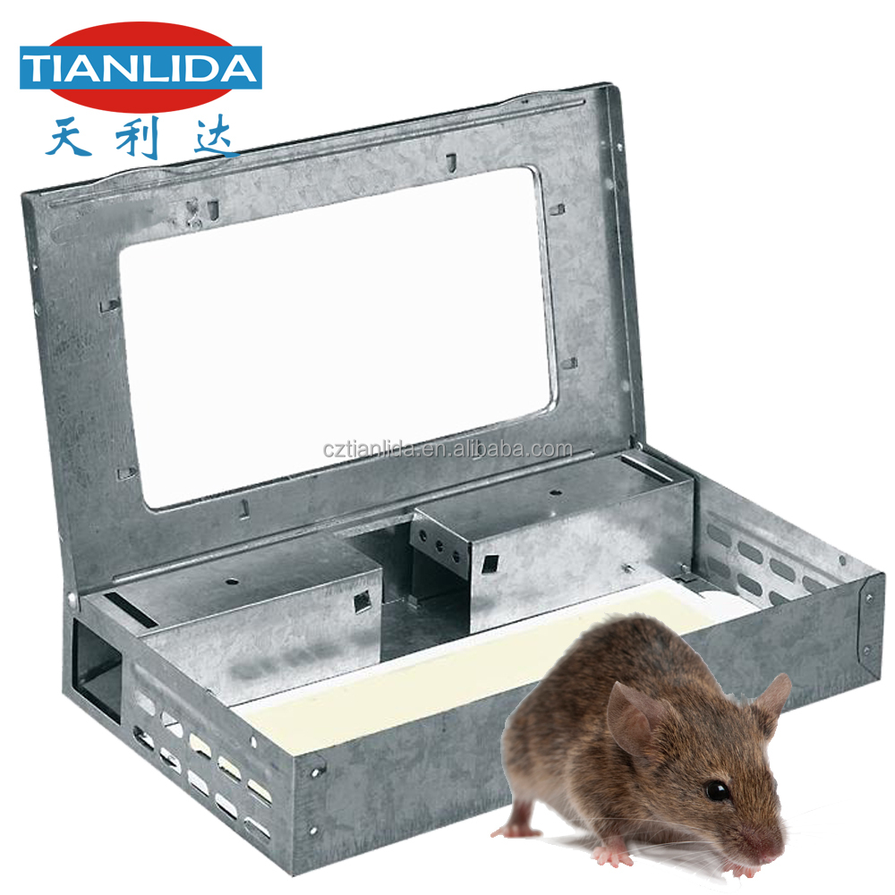 Transparent Checking Window Live Catch Mouse Trap for Home Use