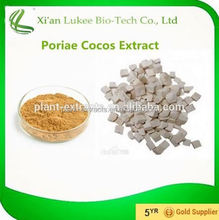 Hot sale Plant extract Indian buead extract/Fu ling mushroom extract/Wolfiporia extensa extract