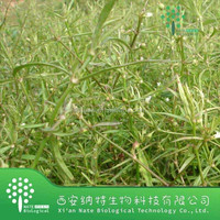 factory supply Natural Spreading Hedyotis Herb Extract