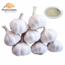 wholesale best price supplement Allicin powder garlic essence