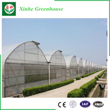 Double inflated plastic film greenhouse,farm irrigation systems,professional greenhouses used,commercial greenhouses