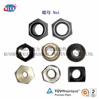 Rail Hex Lock Nut For Railroad System, SGS Proved Rail Hex Lock Nut, Top quality OEM Rail Hex Lock Nut