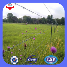 Cheap galvanized barbed wire fencing cost(Anping ISO9001 factory)