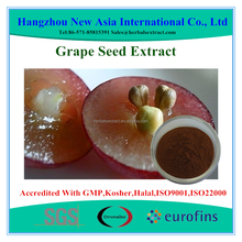 High Quality Herbal Extract Grape Seed Extract OPCs 95% Polyphenols 80%