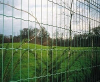 Hot dip galvanized or hot dip plastic coated Euro fence