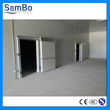 Customized new design deep freezer cold room for sale