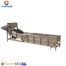 Fruits processing cleaning machine/date/olive/cucumber cleaning machine/washing machine for fruits
