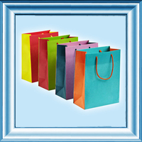 Eco-friendly paper handbag shopping bag