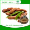 Top Quality Tamarind Indica Powder With