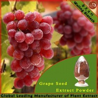 Sale Grape Seed P.E