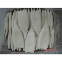 2017 Wholesale price the best High quality Whole Seafood frozen For Export dried squid