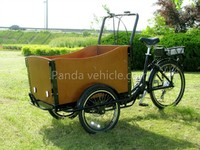Denmark hot CE approved 3 wheel cargo bicycle motor for sale