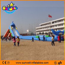 Exciting games water slide giant inflatable pool slide for adult
