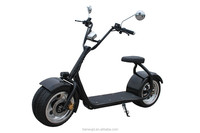 China Cheap Li-Ion Battery Fat Tire Off Road Stand Up 2 Wheel Electric Scooter, Electric Motorcycle For Sale
