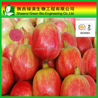 Kosher/ISO9001 Certificate Pomegranate Extract,Factory Supply Reasonable Price