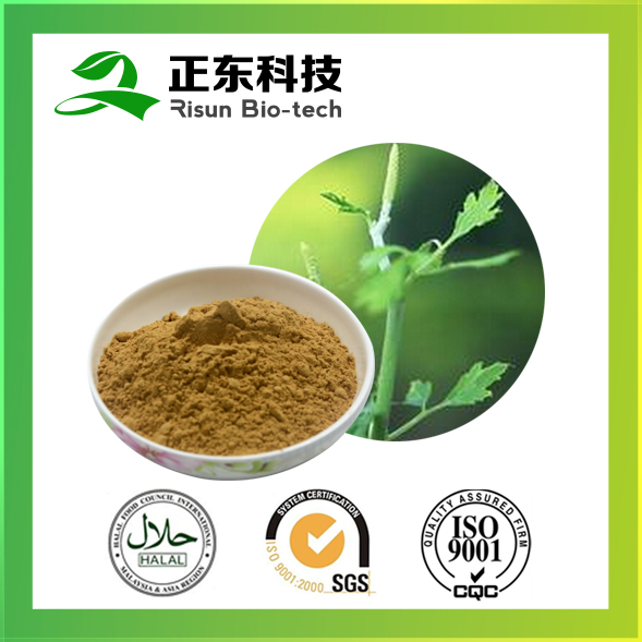 Pure Black Cohosh Extract Powder Type and Powder Form Triterpenoid Saponins 2.5%