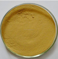 raw turmeric extract