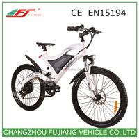 Hot sell Chinese montain electric bike off road with mudguard and rear suspention CE EN15194 (FJTDE05)