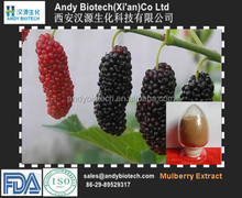 Pure Natural Plant Extract Mulberry 10:1