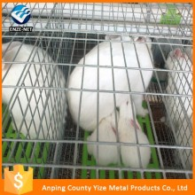 metal, Stainless Steel Material commercial rabbit equipment welded wire rabbit cages sale