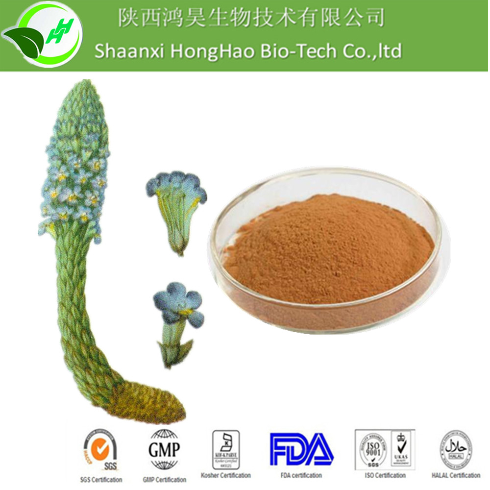 Hot Sale Herb Extract 15%Echinacoside Natural Cistanche Tubulosa Extract