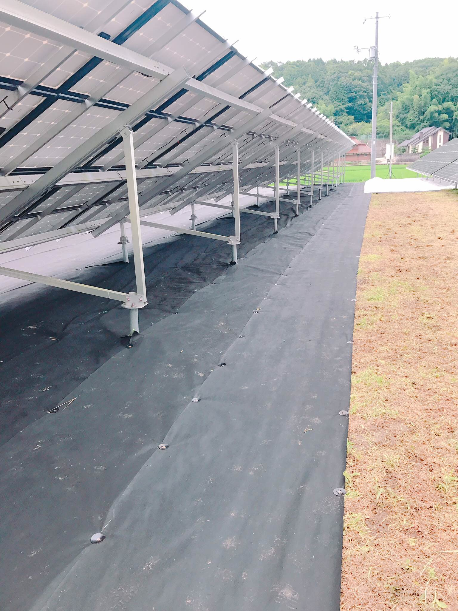 weed control mat sola panel nonwoven weed block factory shandong