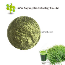 Certified Organic Wheatgrass Powder Online, Best Wheatgrass Juice Powder for Weight Loss