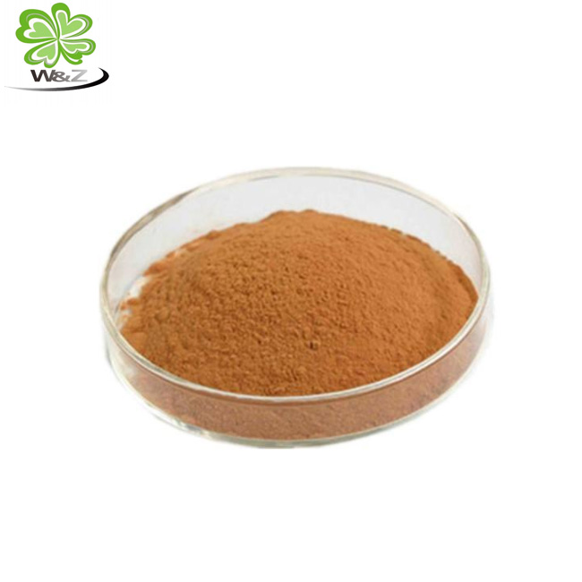 Supply nutritional supplements Ginko flavones Terpenlactone Chemicals Powder Ginkgo biloba leaves Extract