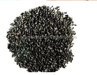 High Natural Quality Black Sesame Seed Extract