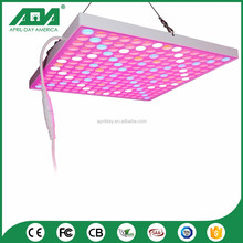 China online shopping 50W led grow light hydroponics