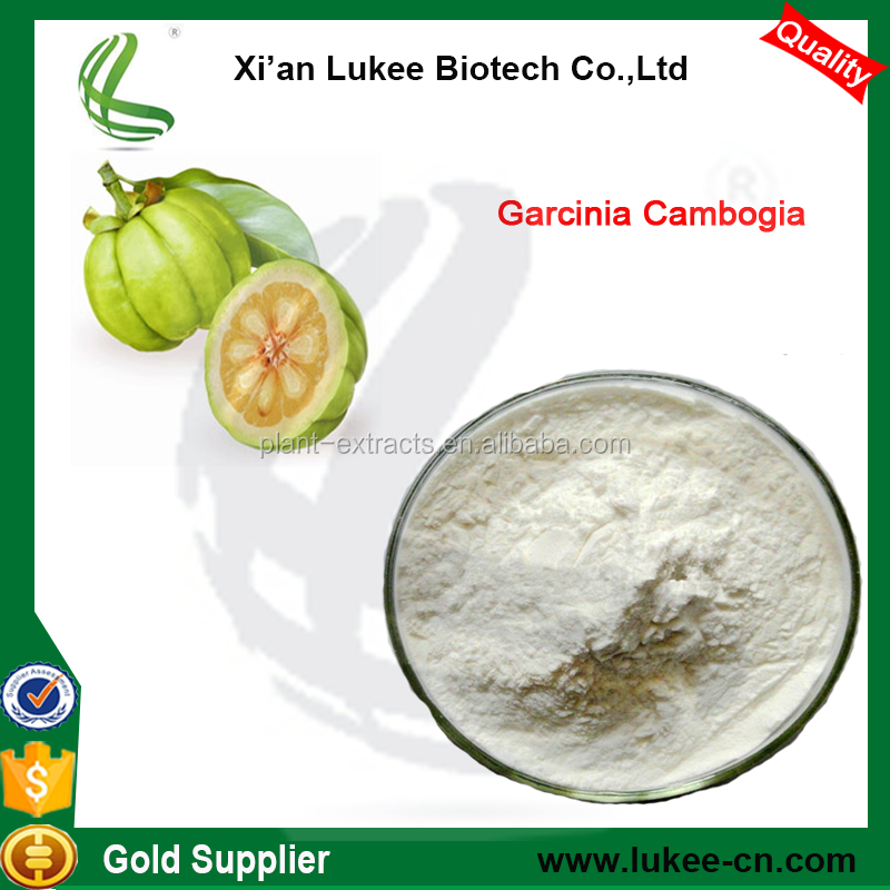 Lowest Price Wholesale garcinia cambogia fruit peel extract/hydroxycitric acid powder 50%
