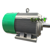 3kw 100rpm pmg alternator, permanent neodymium magnet generator for wind power and hydro turbine
