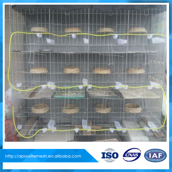 Automatic water drinker pigeon cage sor sale