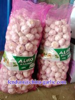White Garlic Import (Cheap Garlic Price in China)