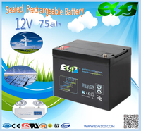 Easy installation multi-language display on grid inverter for solar energy system 12v 75ah battery