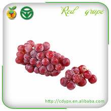 Fresh Sweet Grapes from Longquanyi China