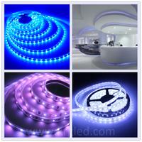 Smd ip68 Waterproof flexible silicon rubber led strip light 5050 60d rgb 12v