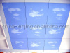 NEW bule color facade ceiling/alumium ceiling with blue sky and cloud