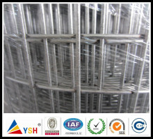 304 316 3/4 Inch galvanized Welded Wire Mesh