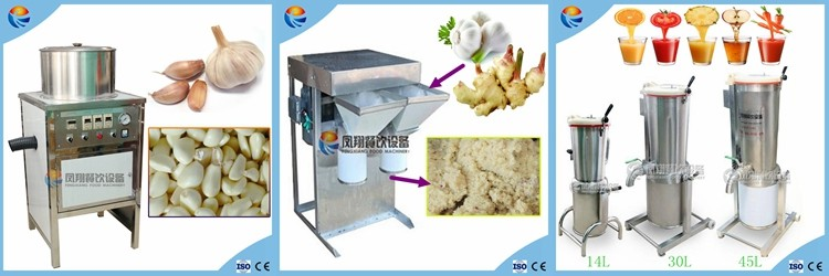 garlic processing machine.jpg
