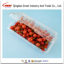 Vegetable and fruit plastic packaging blister trays and container