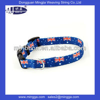 new arrival wholesale dog leash lead/ pet collar