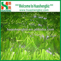 bulk supply frozen/iqf green asparagus for sale