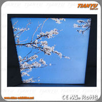 2014 new style warm white led panel light