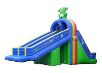 Frog inflatable water slides inflatable slide for pool