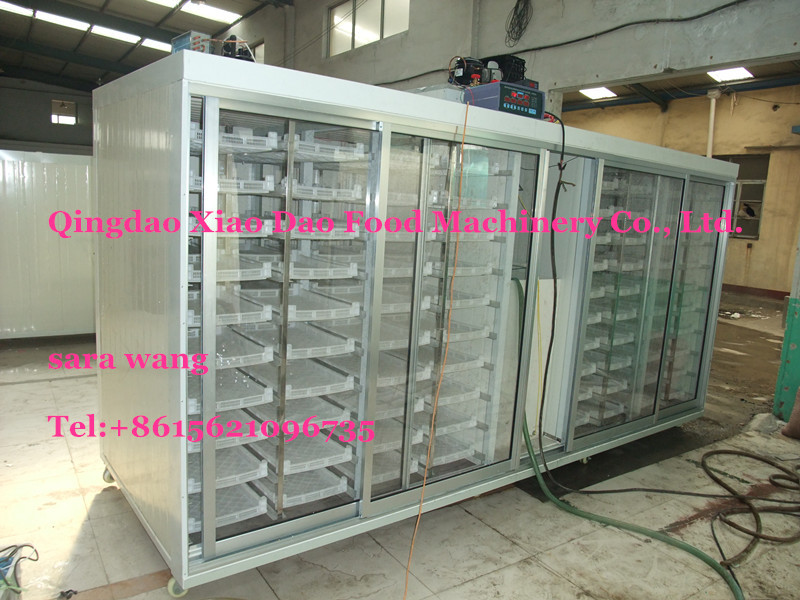 commercial hydroponics machine/Bud seedling machine/animal fodder machine/+8615621096735