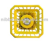 20-120W high power explosionproof flameproof led light