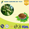 Best price of Soapnut P.E. 40%/70% Soapnut saponins